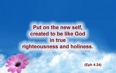 Put on the new self, created to be like God in true righteousness and holiness