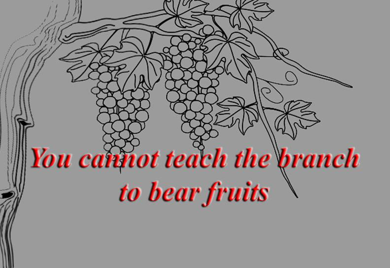 You cannot teach a branch to bear fruits